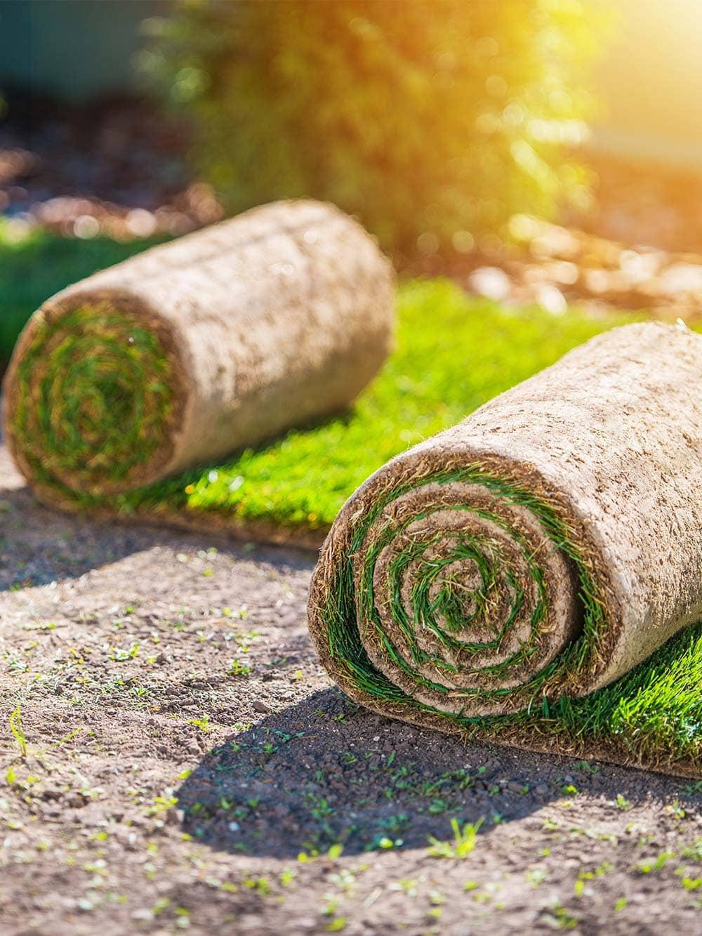 High Quality Garden Lawn Turf